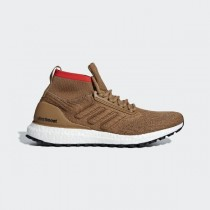 adidas Ultra Boost All Terrain Raw Desert - CM8258