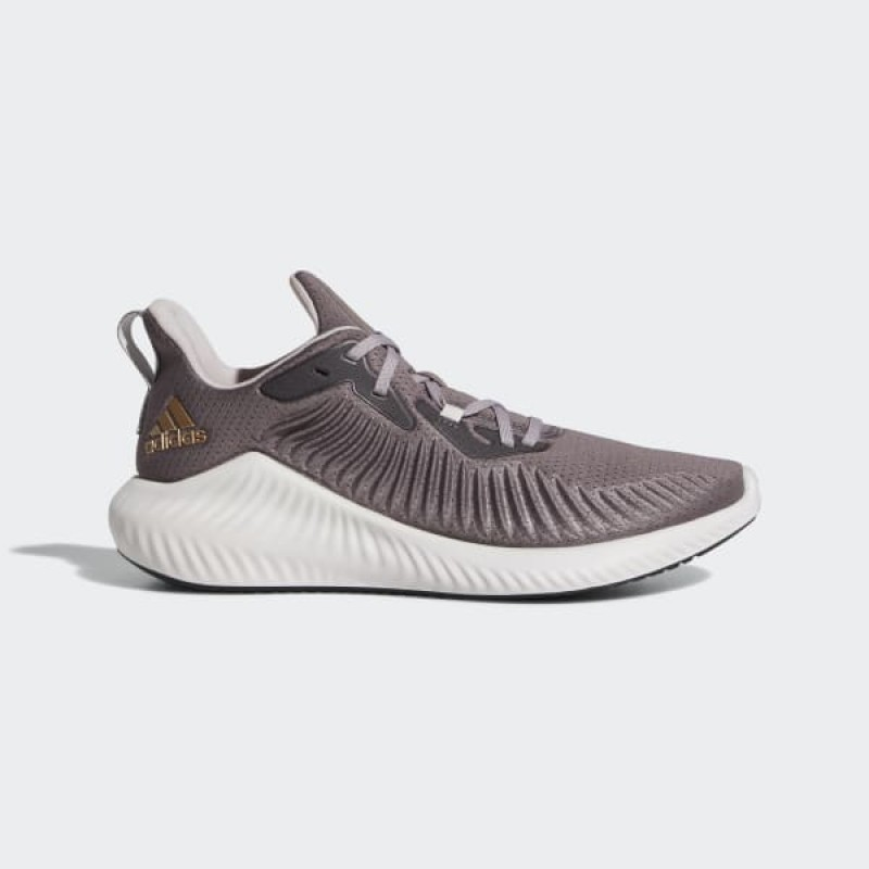 adidas Alphabounce+ Run Chaussures - Pourpre - G28572